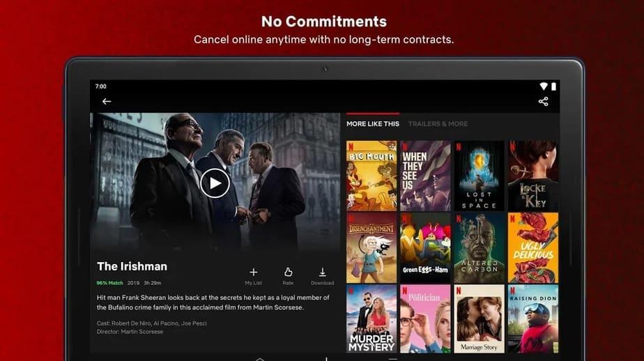 Netflix User-Friendly App